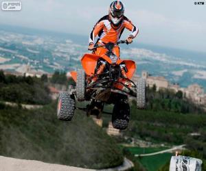 Puzle Quad ou quadriciclo pulando