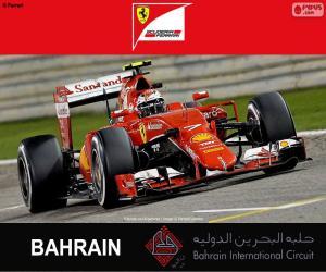 Puzle Räikkönen G.P. Bahrain 2015