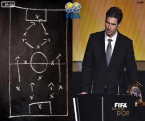 Puzle Ralf Kellermann, FIFA 2014