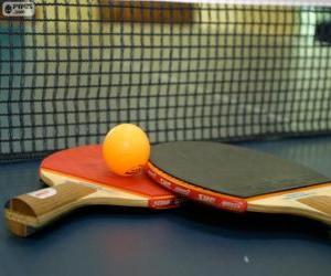 Puzle Raquetes e bola de ping-pong