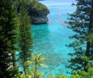 Puzle Recifes e ecossistemas, o arquipélago francês da Nova Caledônia, localizada no Oceano Pacífico.