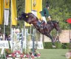 Hipismo ou Equitação - Cavalo e cavaleiro no exercício de salto
