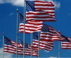 Bandeira dos Estados Unidos da América ou USA ou EUA