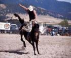 Rodeo - Cavaleiro na prova do cavalo com sela, cavalgando um cavalo selvagem