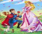 Príncipe Philip em rebaixamento delante da princesa Aurora no pedido de casamento