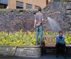 Jardineiro cuidando plantas, regando
