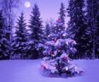Abetos do Natal em uma paisagem nevada com a lua no céu
