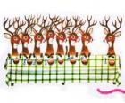 Grupo de renas de Natal à espera de alimentos