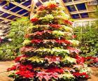 Árvore de Natal poinsétias