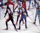 O biatlo em um esporte de inverno da combinação de cross-skiing país com tiro ao alvo.