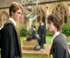 Harry Potter e seu amigo Cedrico Diggory
