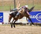 Cowboy montando um cavalo empinado em um rodeio