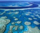 A Grande Barreira de Corais, recifes de coral em todo o mundo maior. Austrália.