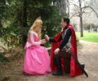 Prince ajoelhando-se diante da princesa dá uma rosa