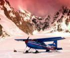 Cessna 185 na neve