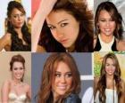 Miley Cyrus é conhecida por seu papel de Miley Stewart / Hannah Montana na série original Disney Channel, Hannah Montana.