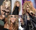 Kesha é uma cantora e compositora americana.