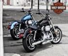 Duas Harley davidson