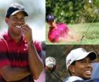 Tiger Woods é um jogador de golfe norte-americana.