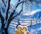 dois ursos muito quente em uma paisagem de Natal