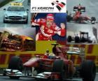 Fernando Alonso comemora a vitória no Grand Prix da Coreia (2010)