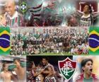 Fluminense Football Club campeão do Campeonato Brasileiro de 2010
