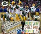 Green Bay Packers Campeão NFC 2010-11