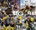 Green Bay Packers comemorou sua vitória no Super Bowl 2011