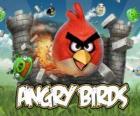 Angry Birds é um jogo de vídeo de Rovio. Os pássaros furioso atacan os porcos que rouban ovos