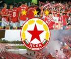 CSKA Sofia, da equipa de futebol da Bulgária