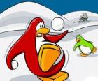 Pinguins lutando uma guerra de neve no Club Penguin