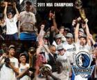 Campeões 2011 da NBA Dallas Mavericks