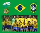 Seleção do Brasil, Grupo B, Argentina 2011