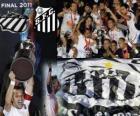 Copa Libertadores 2011 Campeão Santos FC