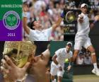 Novak Djokovic campeão de Wimbledon 2011