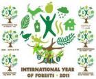 2011 Ano Internacional das Florestas