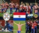 Paraguai finalista, Copa América, Argentina 2011