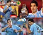 Luis Suarez melhor jogador da Copa América 2011