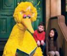Garibaldo ou Poupas Amarelo ou lendo um livro de histórias