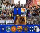 Copa do Mundo de Clubes da FIFA Japão 2011
