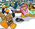 Grupo de pinguins passando o dia ao ar livre apreciando a neve