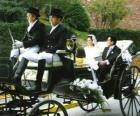 Os recém-casados deixar a cerimônia em um cavalo desenhado transporte