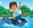 Diego no mar na carapaça de uma tartaruga marinha