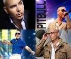 Pitbull (Armando Christian Pérez), é um produtor musical de ascendência cubana
