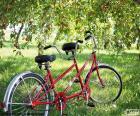 Tandem de dois ciclistas