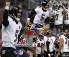 Baltimore Ravens o campeão da AFC de 2012