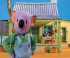 Frank é um dos irmãos koala australiano