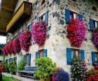 Casa na primavera com flores na janelas