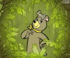 A bela ursa Cindy é a namorada de Zé Colméia