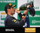 Mark Webber - Red Bull - Grande Prémio do Brasil 2013, 2º classificado